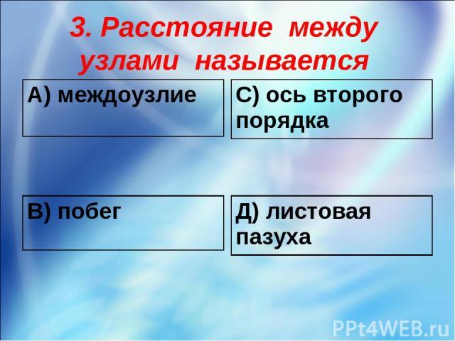 3. Расстояние между узлами называется А) междоузлие С) ось второго порядка В) побег Д) листовая пазуха