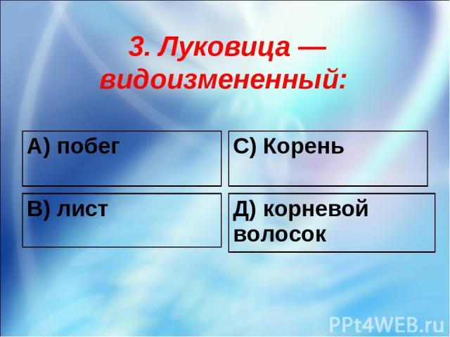3. Луковица — видоизмененный: А) побег С) Корень В) лист Д) корневой волосок