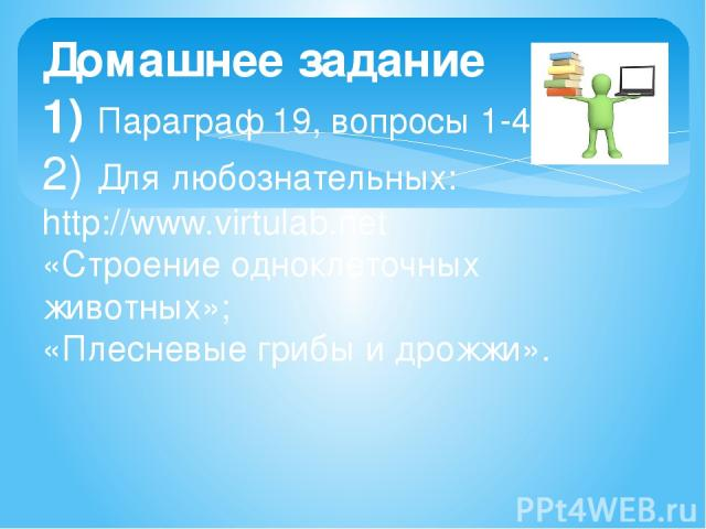 Домашнее задание 1) Параграф 19, вопросы 1-4. 2) Для любознательных: http://www.virtulab.net «Строение одноклеточных животных»; «Плесневые грибы и дрожжи».