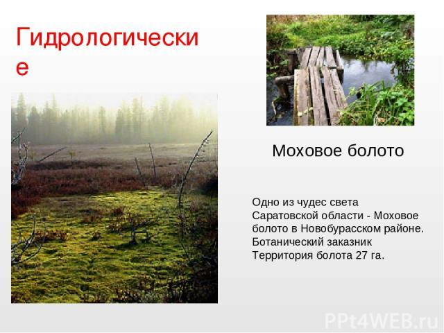 Гидрологические Одно из чудес света Саратовской области - Моховое болото в Новобурасском районе. Ботанический заказник Территория болота 27 га. Моховое болото