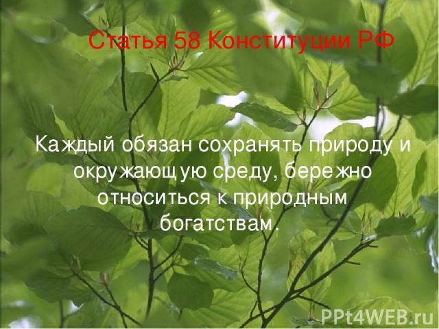 Статья 58 Конституции РФ Каждый обязан сохранять природу и окружающую среду, бережно относиться к природным богатствам.