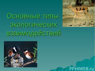 Основные типы экологических взаимодействий