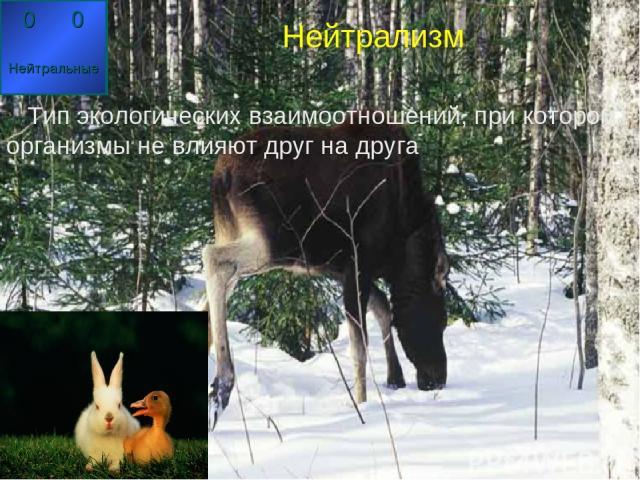 Нейтрализм Тип экологических взаимоотношений, при котором организмы не влияют друг на друга Нейтрализм Тип экологических взаимоотношений, при котором организмы не влияют друг на друга 0 0 Нейтральные 0 0 Нейтральные