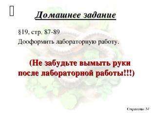 Домашнее задание §19, стр. 87-89 Дооформить лабораторную работу. (Не забудьте вы