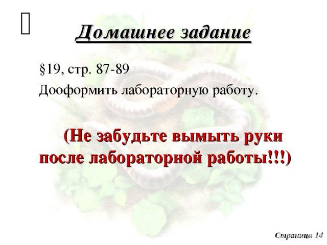 Домашнее задание §19, стр. 87-89 Дооформить лабораторную работу. (Не забудьте вымыть руки после лабораторной работы!!!) Страница 14