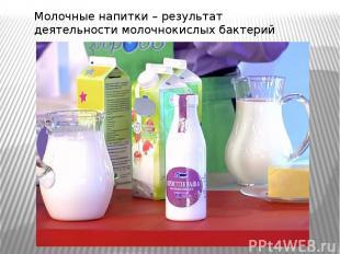 Молочные напитки – результат деятельности молочнокислых бактерий