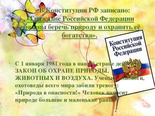 В Конституции РФ записано: «Граждане Российской Федерации обязаны беречь природу