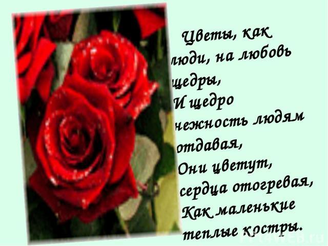 Цветы, как люди, на любовь щедры, И щедро нежность людям отдавая, Они цветут, сердца отогревая, Как маленькие теплые костры.
