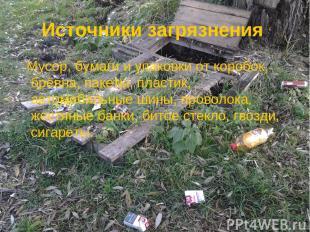 Источники загрязнения Мусор, бумаги и упаковки от коробок, брёвна, пакеты, пласт