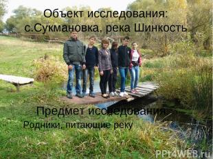 Объект исследования: с.Сукмановка, река Шинкость Предмет исследования: Родники,