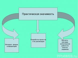 Практическая значимость Разработка проектов и их реализация Интернет- форум, кон
