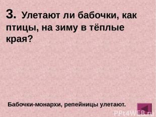 комар ОТВЕТ