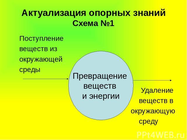 Актуализация опорных знаний Схема №1 Превращение веществ и энергии Поступление веществ из окружающей среды Удаление веществ в окружающую среду