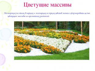 Цветущие массивы На широких полянах в парках и лесопарках из ярких цветов можно