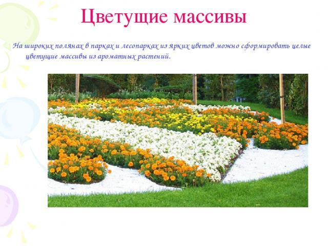Цветущие массивы На широких полянах в парках и лесопарках из ярких цветов можно сформировать целые цветущие массивы из ароматных растений.
