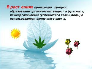 В растениях происходит процесс образования органических веществ (крахмала) из не