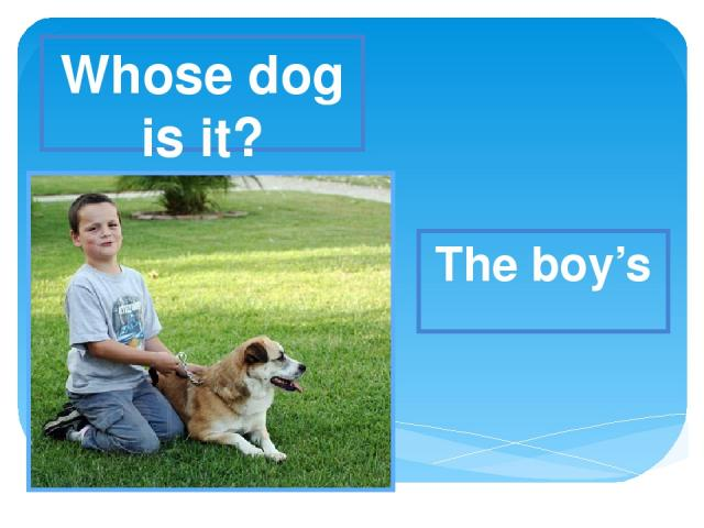 Whose dog is it? The boy's
