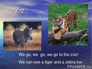 Z z We go, we go, we go to the zoo! We can see a tiger and a zebra too