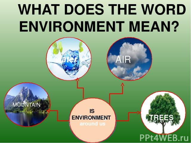 MOUNTAIN TREES AIR water Everything around us WHAT DOES THE WORD ENVIRONMENT MEAN? IS ENVIRONMENT