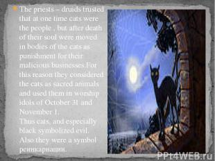 The priests – druids trusted that at one time cats were the people , but after d