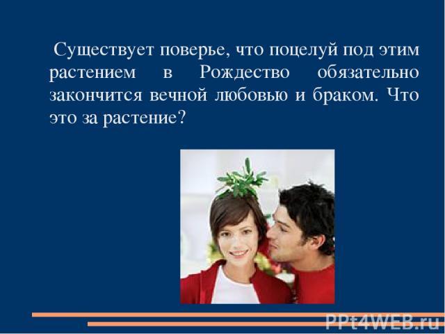 Существует поверье, что поцелуй под этим растением в Рождество обязательно закончится вечной любовью и браком. Что это за растение?
