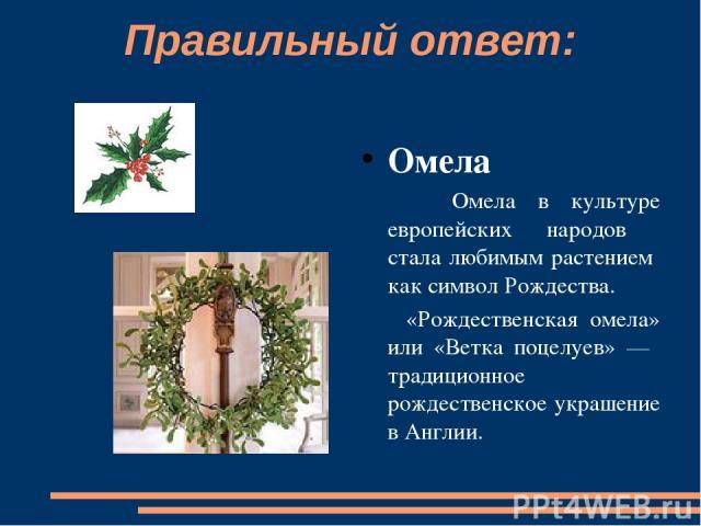 Правильный ответ: Омела  Омела в культуре европейских народов стала любимым растением как символ Рождества. «Рождественская омела» или «Ветка поцелуев» — традиционное рождественское украшение в Англии.