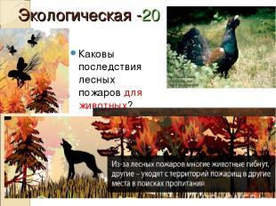 Экологическая -20 Каковы последствия лесных пожаров для животных?