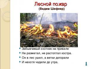 Лесной пожар (Вадим Шефнер) Забывчивый охотник на привале Не разметал, не растоп