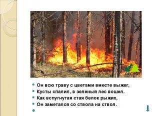 Он всю траву с цветами вместе выжег, Кусты спалил, в зеленый лес вошел. Как вспу