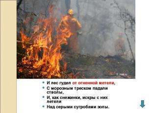 И лес гудел от огненной метели, С морозным треском падали стволы, И, как снежинк