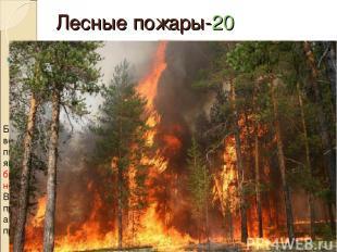 Лесные пожары-20 Какое отношение к пожарам имеет курящий человек ? Большинство п
