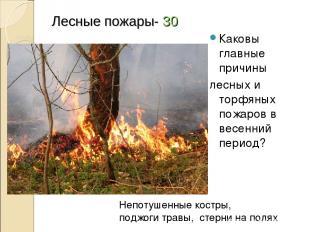 Лесные пожары- 30 Каковы главные причины лесных и торфяных пожаров в весенний пе