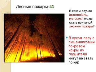 Лесные пожары-40 В сухом лесу с лишайниковым покровом искры из глушителя могут в