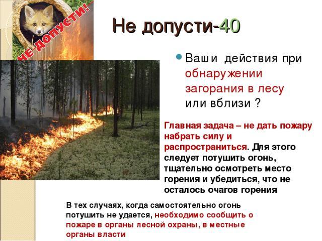 Не допусти-40 Ваши действия при обнаружении загорания в лесу или вблизи ? Главная задача – не дать пожару набрать силу и распространиться. Для этого следует потушить огонь, тщательно осмотреть место горения и убедиться, что не осталось очагов горени…