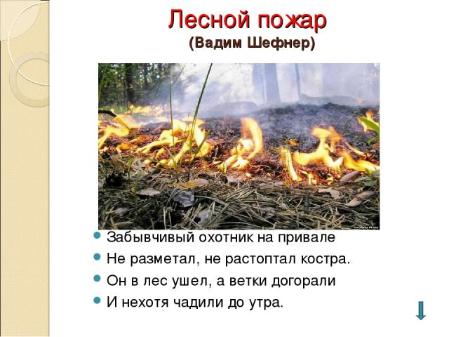 Лесной пожар (Вадим Шефнер) Забывчивый охотник на привале Не разметал, не растоптал костра. Он в лес ушел, а ветки догорали И нехотя чадили до утра.