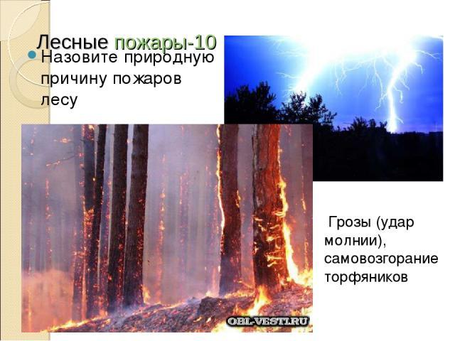 Лесные пожары-10 Назовите природную причину пожаров лесу Грозы (удар молнии), самовозгорание торфяников