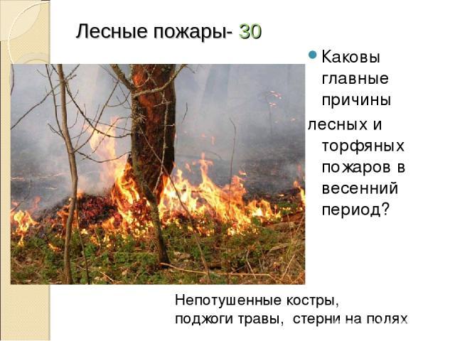 Лесные пожары- 30 Каковы главные причины лесных и торфяных пожаров в весенний период? Непотушенные костры, поджоги травы, стерни на полях
