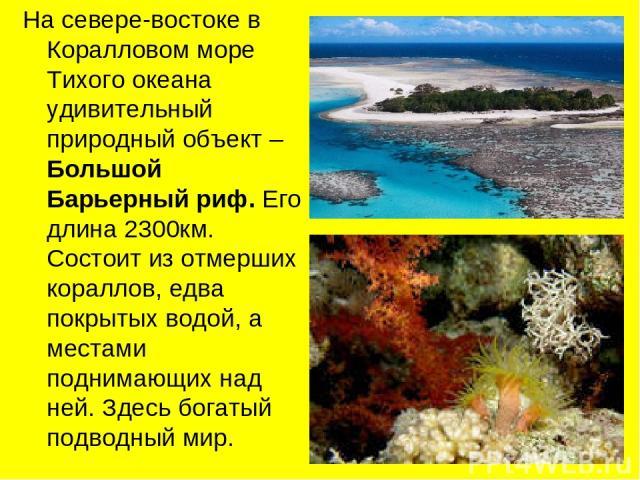 На севере-востоке в Коралловом море Тихого океана удивительный природный объект – Большой Барьерный риф. Его длина 2300км. Состоит из отмерших кораллов, едва покрытых водой, а местами поднимающих над ней. Здесь богатый подводный мир.