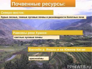 Почвенные ресурсы: Северо-восток: бурые лесные, темные луговые почвы и разновидн