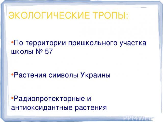 По территории пришкольного участка школы № 57 По территории пришкольного участка школы № 57 Растения символы Украины Радиопротекторные и антиоксидантные растения