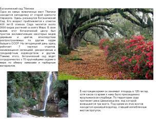 Ботанический сад Тбилиси Одно из самых живописных мест Тбилиси нахо