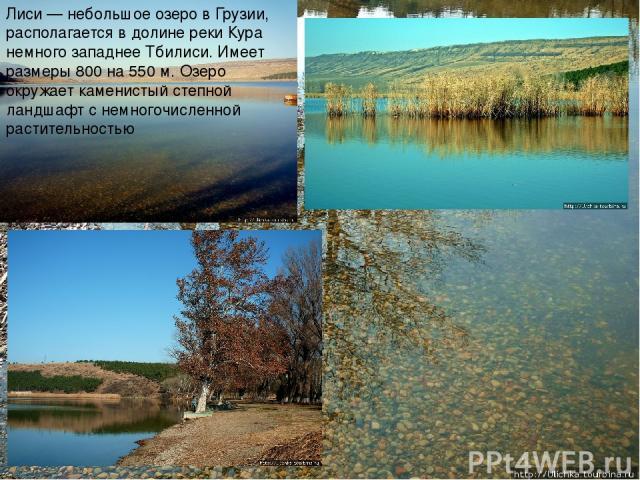 Лиси — небольшое озеро в Грузии, располагается в долине реки Кура немного западнее Тбилиси. Имеет размеры 800 на 550 м. Озеро окружает каменистый степной ландшафт с немногочисленной растительностью