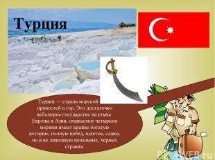 Турция Турция — страна морской соли, пряностей и гор. Это достаточно небольшое г