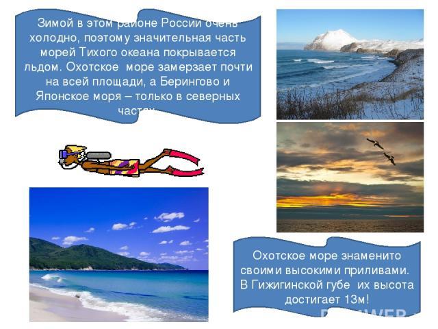 Зимой в этом районе России очень холодно, поэтому значительная часть морей Тихого океана покрывается льдом. Охотское море замерзает почти на всей площади, а Берингово и Японское моря – только в северных частях. Охотское море знаменито своими высоким…