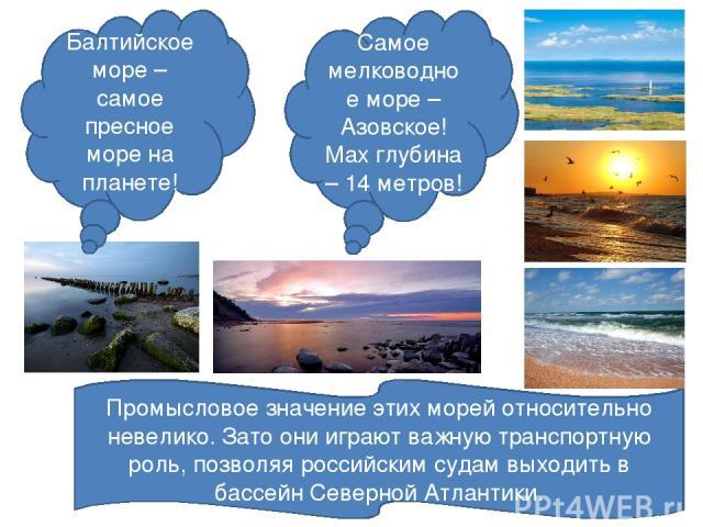 Балтийское море – самое пресное море на планете! Самое мелководное море – Азовское! Max глубина – 14 метров! Промысловое значение этих морей относительно невелико. Зато они играют важную транспортную роль, позволяя российским судам выходить в бассей…