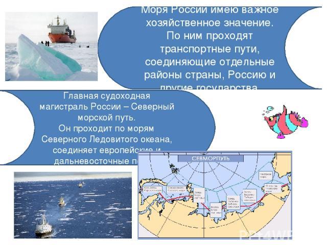 Моря России имею важное хозяйственное значение. По ним проходят транспортные пути, соединяющие отдельные районы страны, Россию и другие государства. Главная судоходная магистраль России – Северный морской путь. Он проходит по морям Северного Ледовит…
