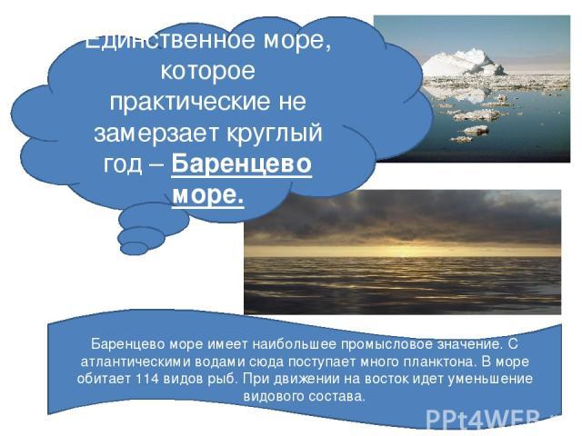 Единственное море, которое практические не замерзает круглый год – Баренцево море. Баренцево море имеет наибольшее промысловое значение. С атлантическими водами сюда поступает много планктона. В море обитает 114 видов рыб. При движении на восток иде…
