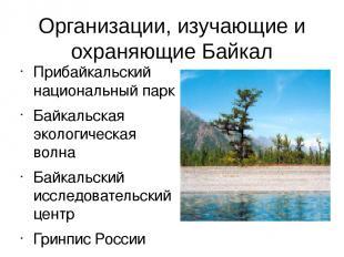 Организации, изучающие и охраняющие Байкал Прибайкальский национальный парк Байк