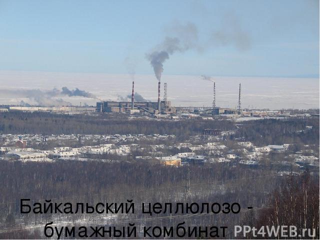 Байкальский целлюлозо - бумажный комбинат