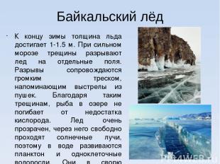Байкальский лёд К концу зимы толщина льда достигает 1-1.5 м. При сильном морозе